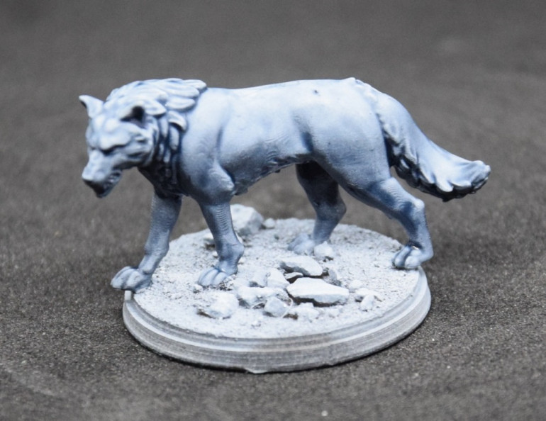 For the fur, I simply used Citadel Contrast Space Wolf Grey. It's a great way to efficiently add shadows, and keep the zenithal highlight.