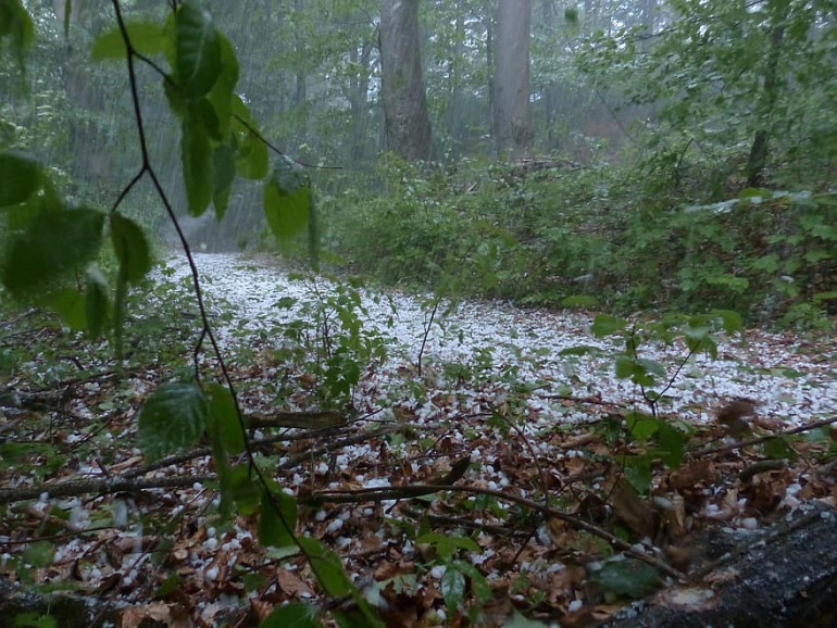 Actual photo of a hailstorm in Neverwinter Wood