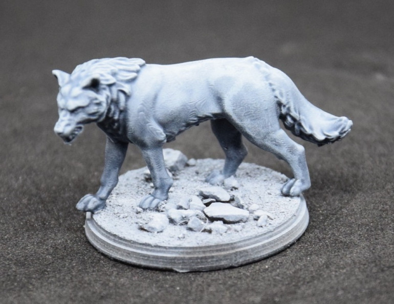 I then dry brushed the fur with Citadel Dry Etherium Blue