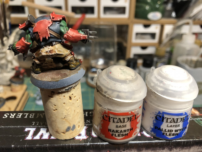 Paints are highlighted with Rakarth Flesh and Pallid Wych Flesh. Skip the second one for speed.