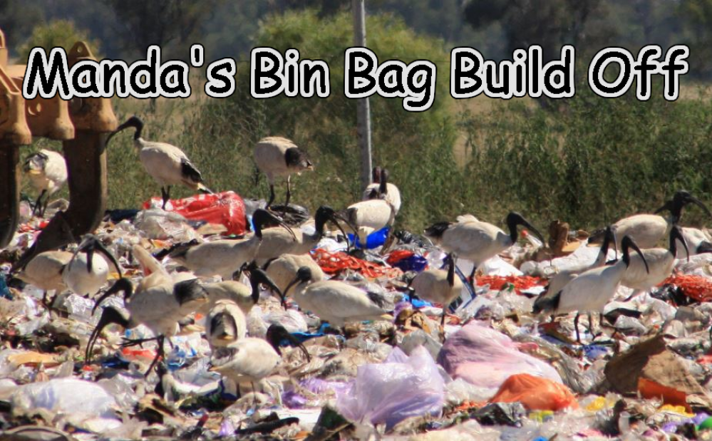Manda's (Amachan) Bin Bag Build Off