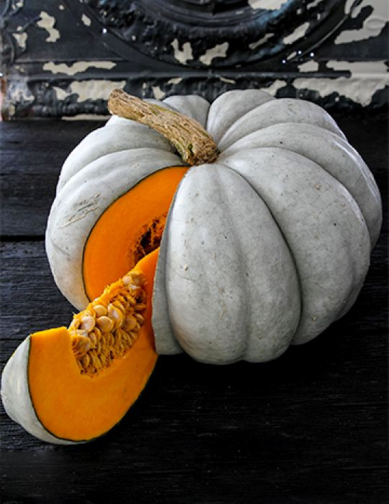 And this is a Jarrahdale pumpkin that is way more common here in Australia and it looks nicer than just a uniform bunch of Orange ones