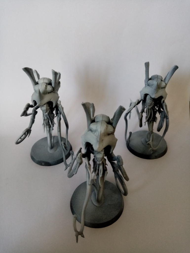 I primed my models with grey and then white from the top so now I am ready to paint