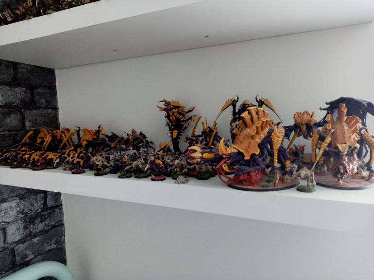 This is my current collection of Tyranids and it is quite large. However, I am still trying to add to it