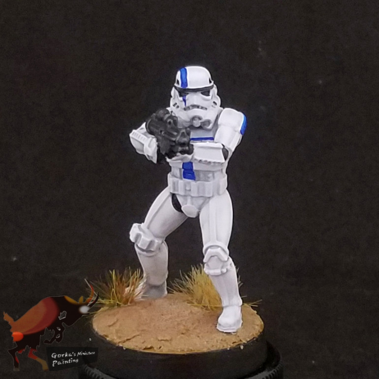 501st stormtroopers