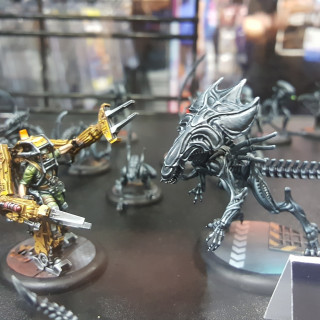Ninja Division Shows Off Some Killer AVP Painted Minis