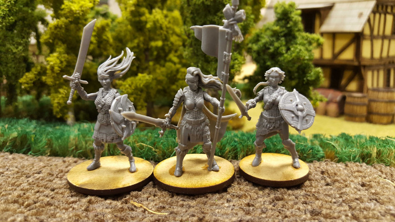 Justin's Sell Sword Shieldmaiden Warband