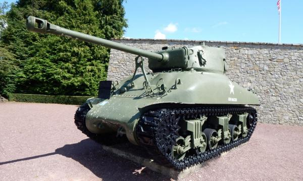 Polish Sherman 02